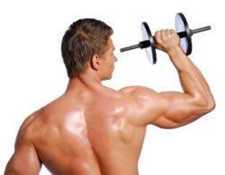 Séries para musculação masculina